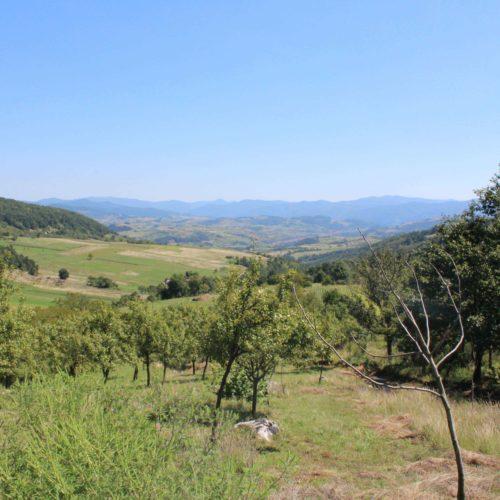 Krajina kolem vesnicky Gernik | Zdroj: CK KM